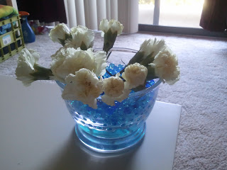 Carnation science experiment for children