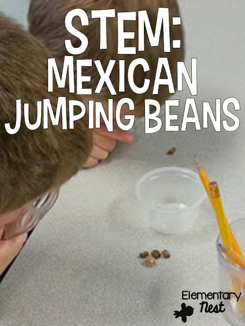 STEM Lab Mexican Jumping Beans Experiment