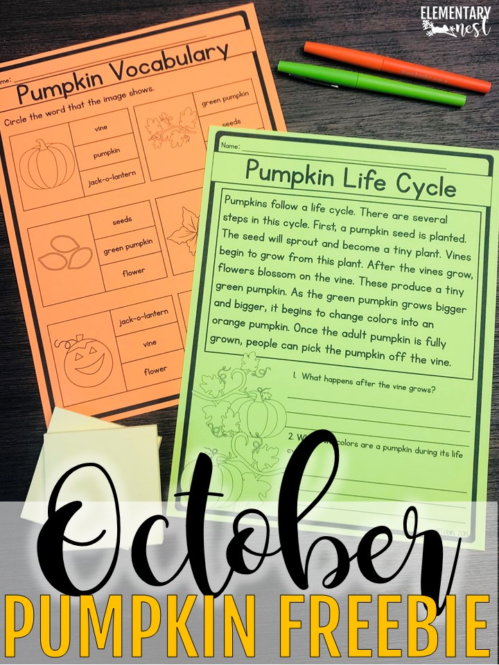 A FREE set of pumpkin life cycle worksheets - October primary resources.
