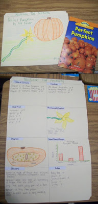 Text Features Activities and Lesson Ideas- free file folder idea.