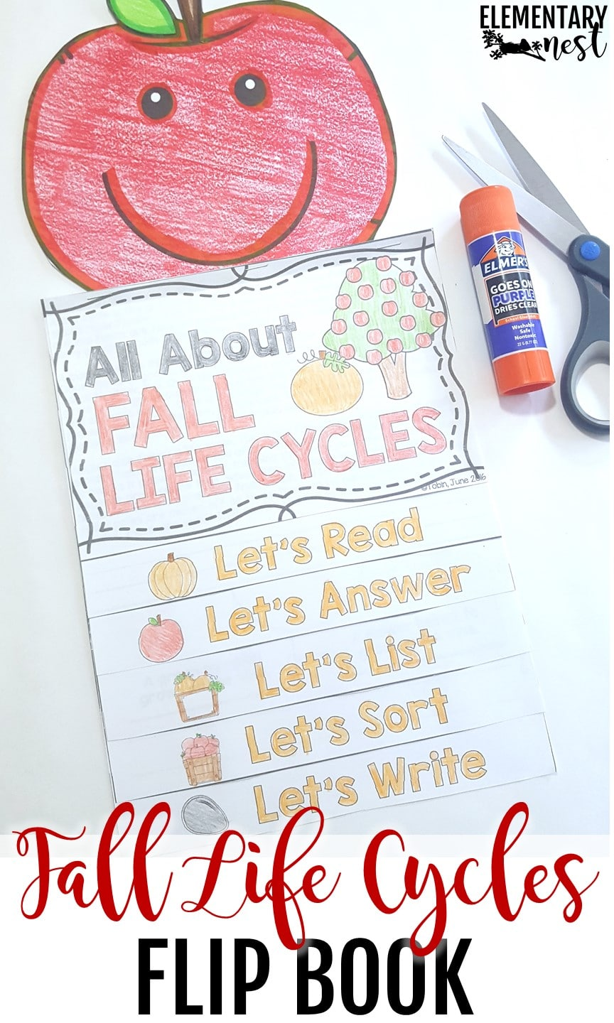 Apple life cycle reading flip book.