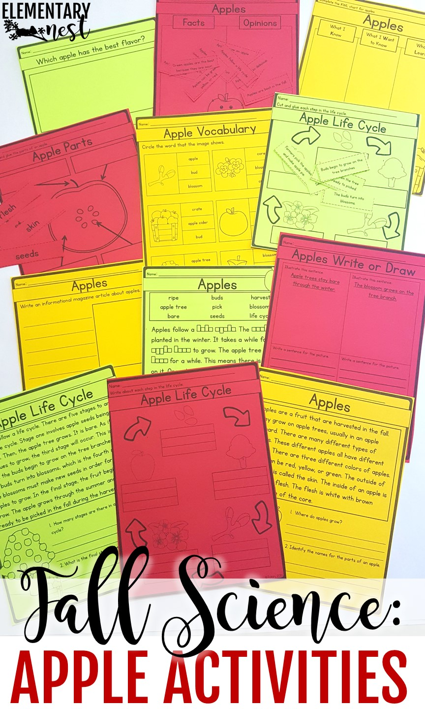 Apple life cycle reading and science unit.