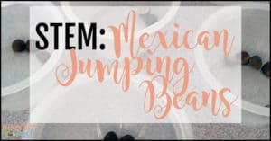 STEM: Mexican jumping beans