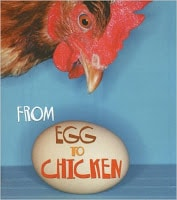 From Egg to Chicken life cycles book