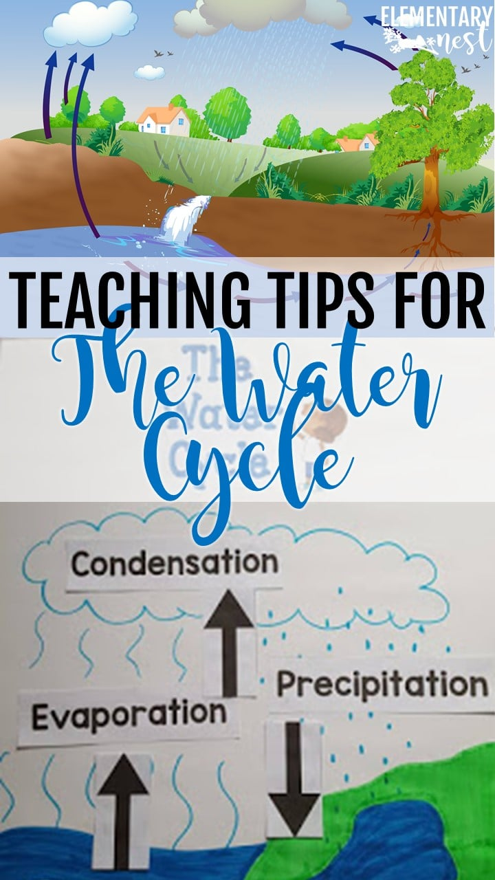 Teaching tips for the Water Cycle.