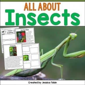 Insects Nonfiction Unit