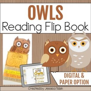 Owls Reading Flip Book