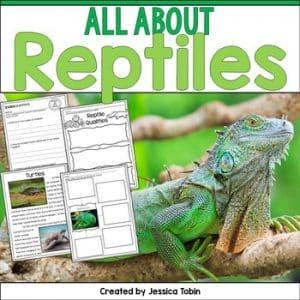 Reptiles Nonfiction Unit