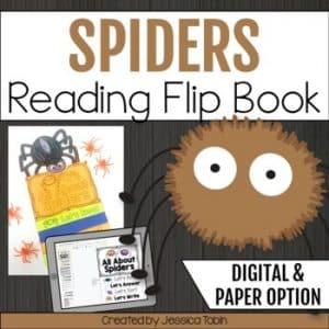 Spider Reading Flip Book