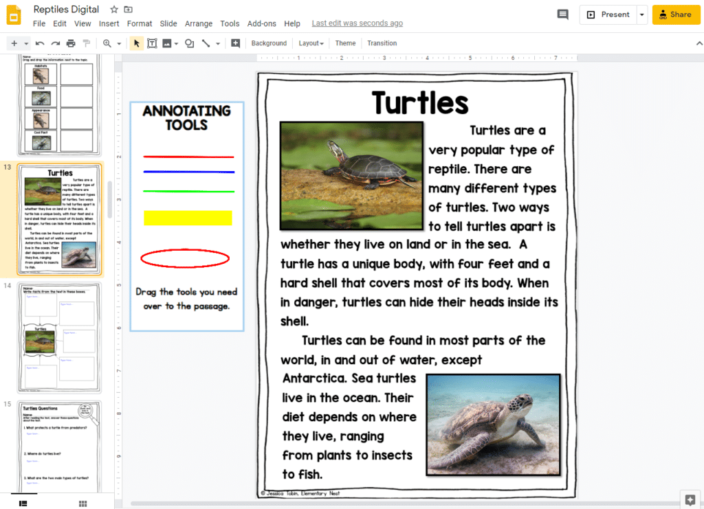 All About Turtles Google Slides FREEBIE