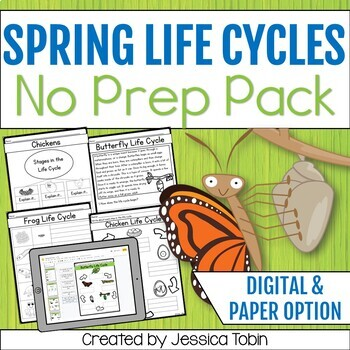 Life Cycles for Spring