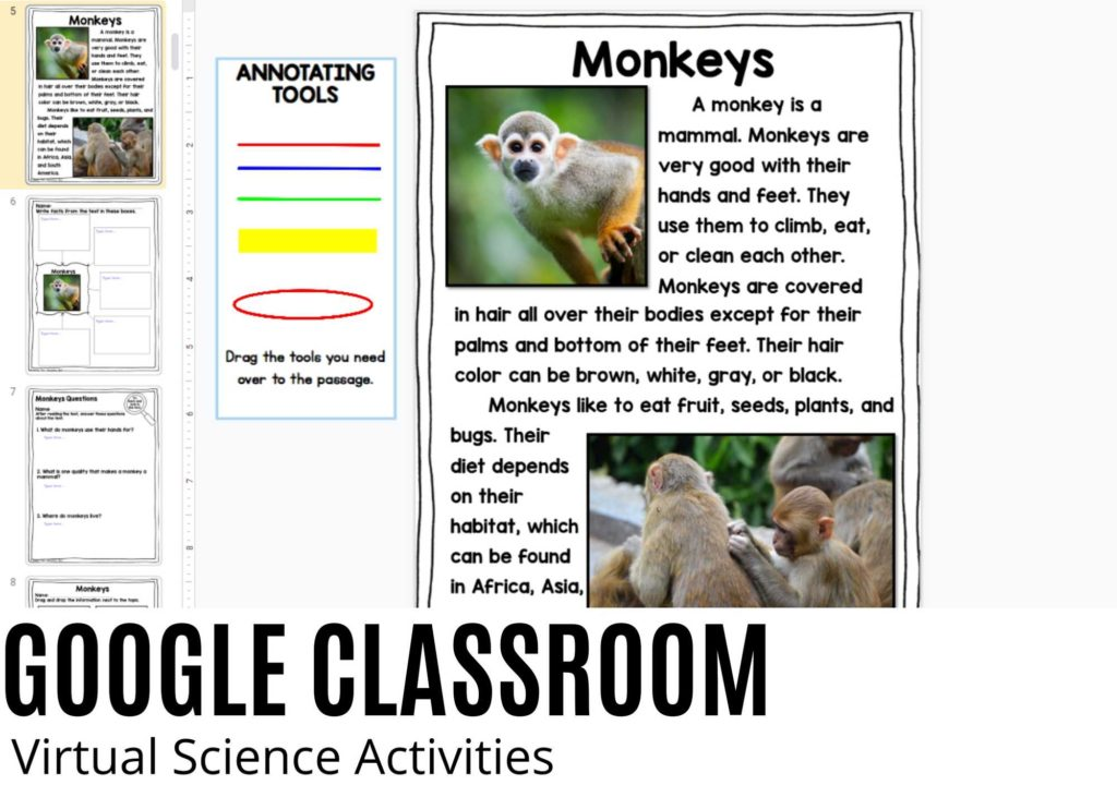 ipad All About Animals digital activity