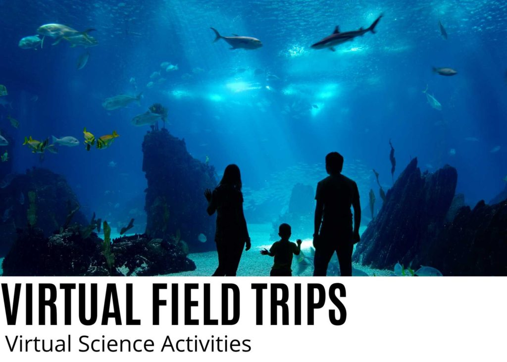 Virtual field trips picture of aquarium