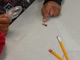 STEM science activity