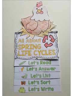 All about spring life cycles