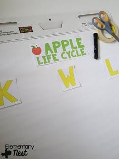 Apple life cycle KWL