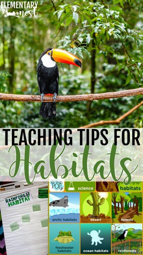 Teaching tips for habitats