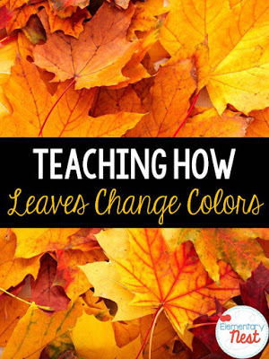 Teaching how leaves change colors
