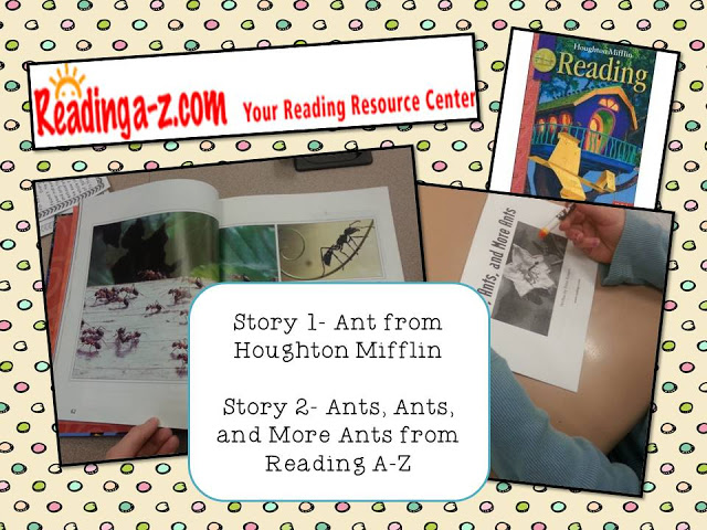 Ant book images
