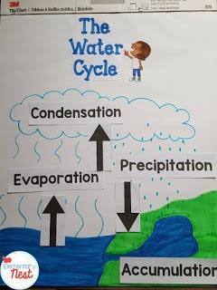 Teaching water cycle freebie