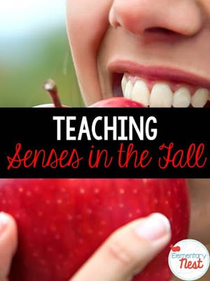 Teaching senses in the fall