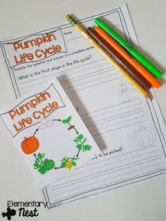 Pumpkin life cycles flip covers