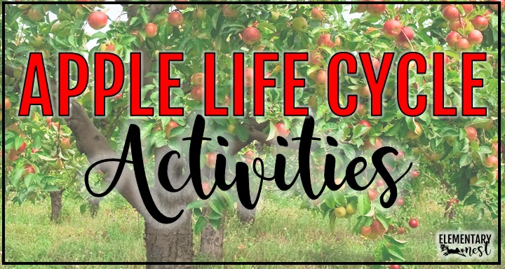 Learn about some great activities for teaching the apple life cycle. Reading and science integration are key for these lessons and ideas. You will find anchor charts, printable resources, book recommendations and more!